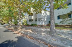 900 Colley Ave  #4  Norfolk, 23507